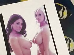 Lucy Pinder & Michelle Marsh cumtribute