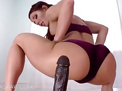 Phat Asses e Beautiful Pussy (PMV) (COMPILATION)