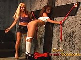 Delicious blonde slut Cat Cleavage has fun with sluts and