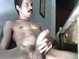 Venezolano Semental