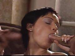 modern gems 52free full porn