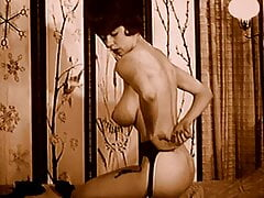 IN DREAMS - vintage 60s big tits lingerie tease