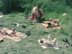 Love-in (1978)