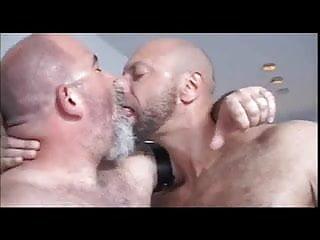 Bald bear s...