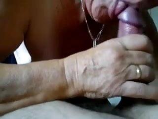 swallow N155...